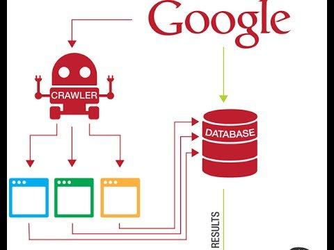 How Search Engine Works – Bangla Tutorial