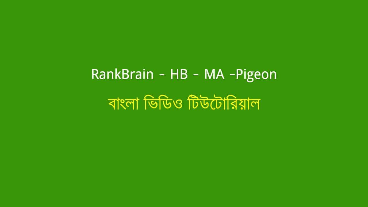 What Is RankBrain –  Hummingbird – Manual Action & Pigeon Algorithm?